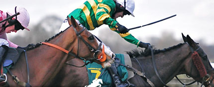 Horseracing odds comparison