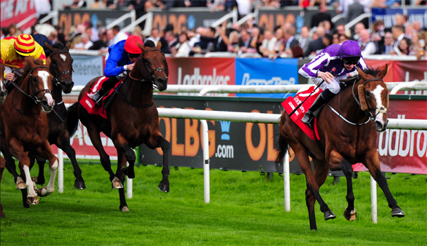 Leading Light winning the 2013 St.Leger Stakes