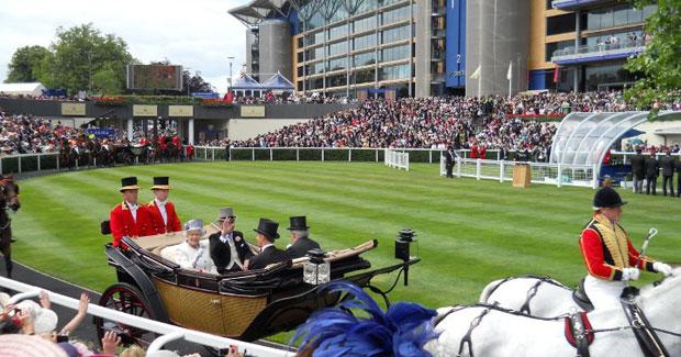 allhorseracing.ag royal sport betting