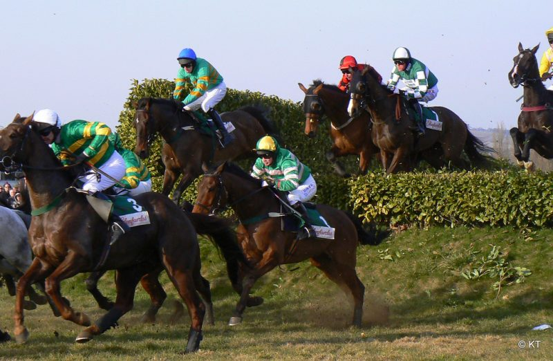 Cheltenham Festival horse racing offers