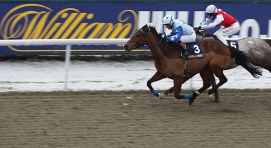Dubai World Cup betting odds from William Hill horse racing