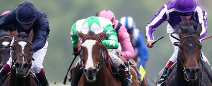 St Leger Betting News