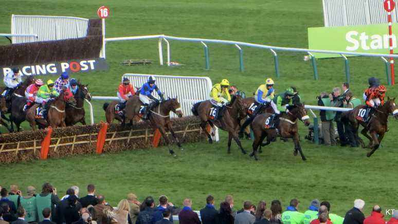 Cheltenham supreme novices hurdle betting sites soccer betting systems free