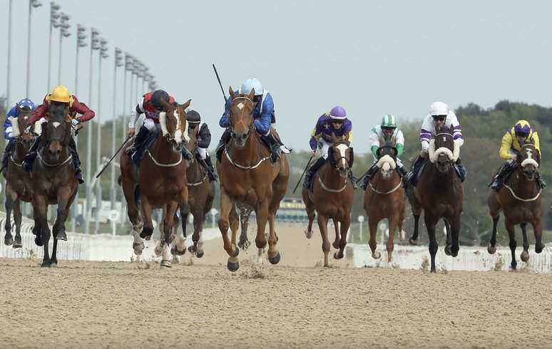 Newcastle Horse Racing Betting Tips