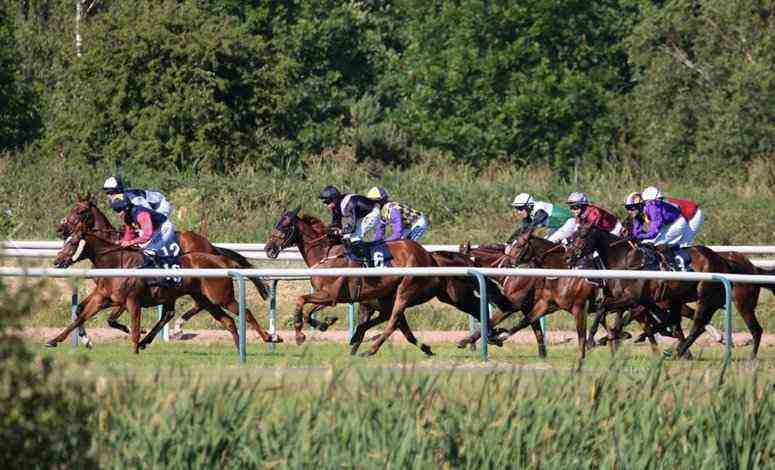 Horse Racing Betting Tips - Southwell