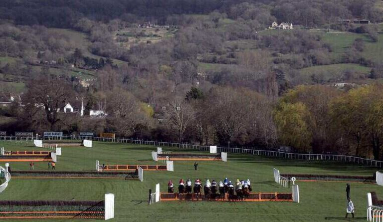 Paddy Power Gold Cup Tips