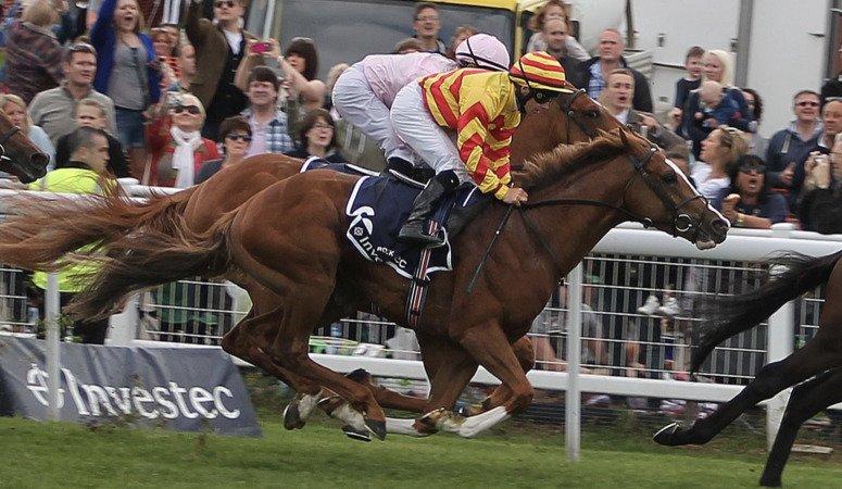Galileo Rock Horse Racing Blog